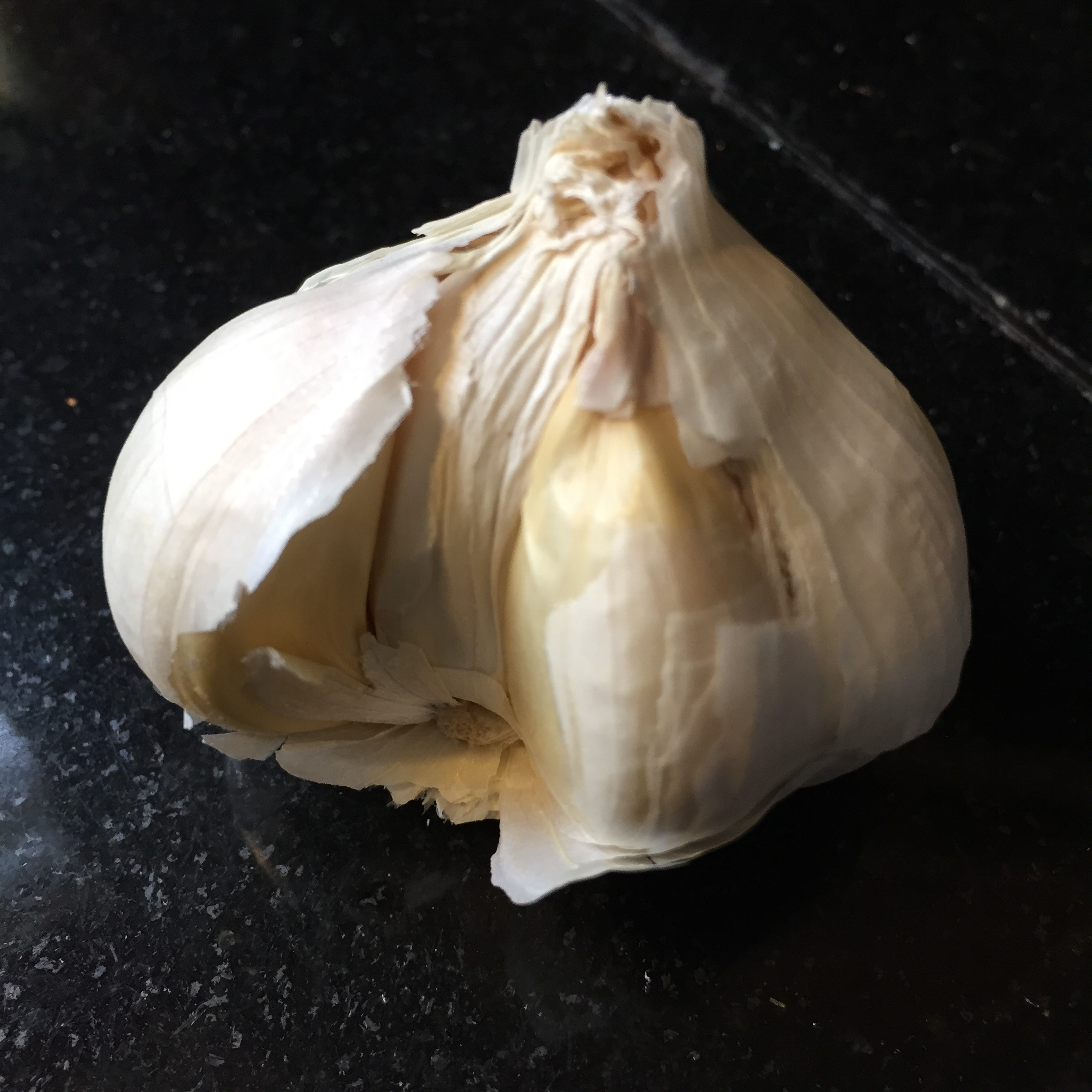how to make garlic oil for ears